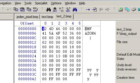 První BMP v Oracle zobrazená v WinHex